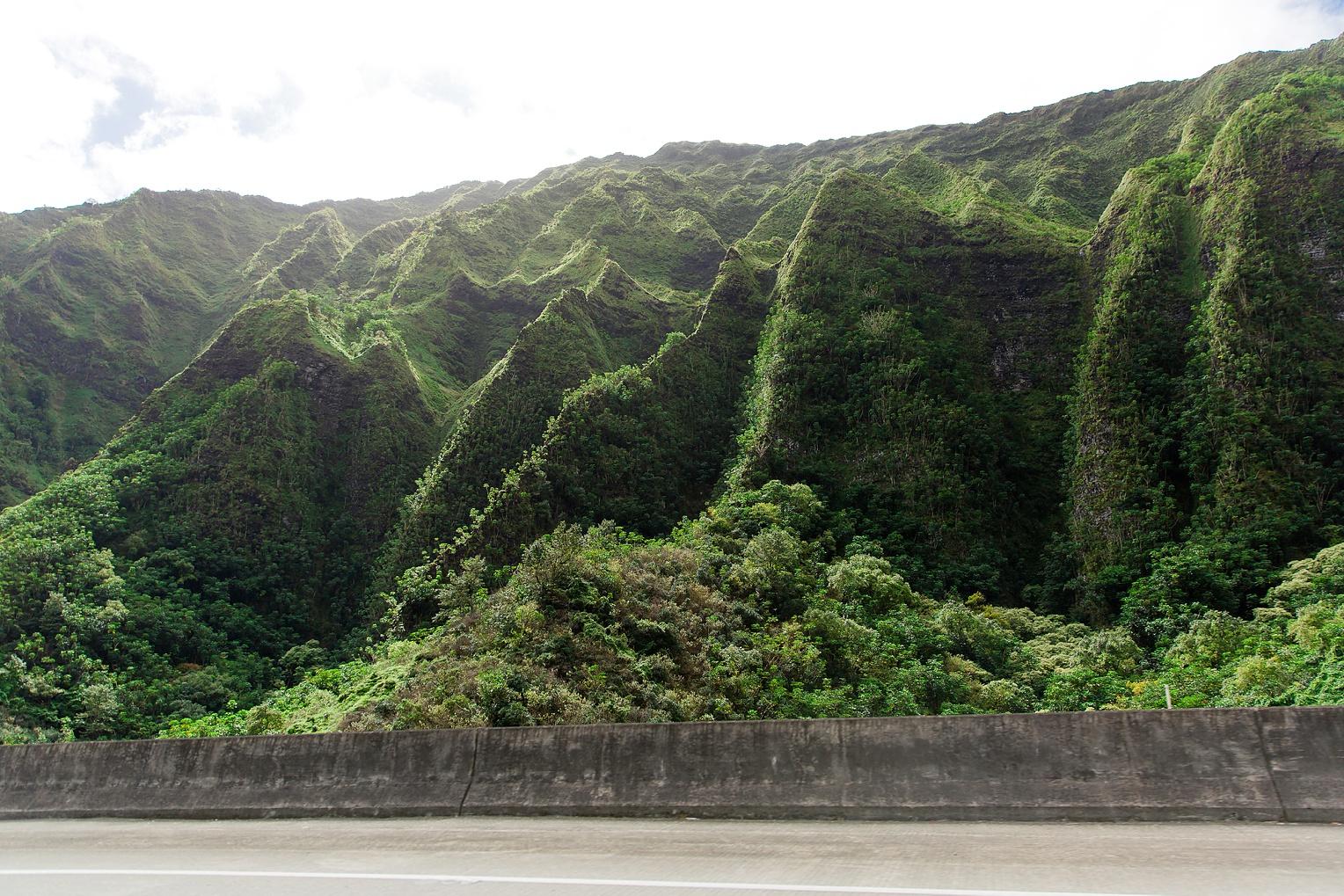 Hawaii Oahu Botanical Gardens Ko'olina Lagoon-9363.jpg