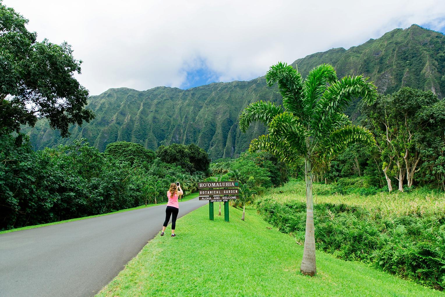 Hawaii Oahu Botanical Gardens Ko'olina Lagoon-9413.jpg