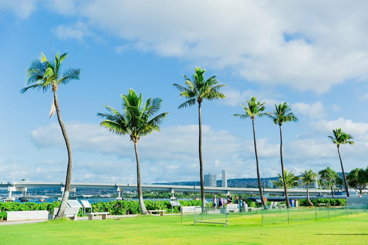 Megan Kelsey Photography Hawaii Oahu Byodo Temple Diamondhead Hike Waikiki Pearl Harbor-0860.jpg