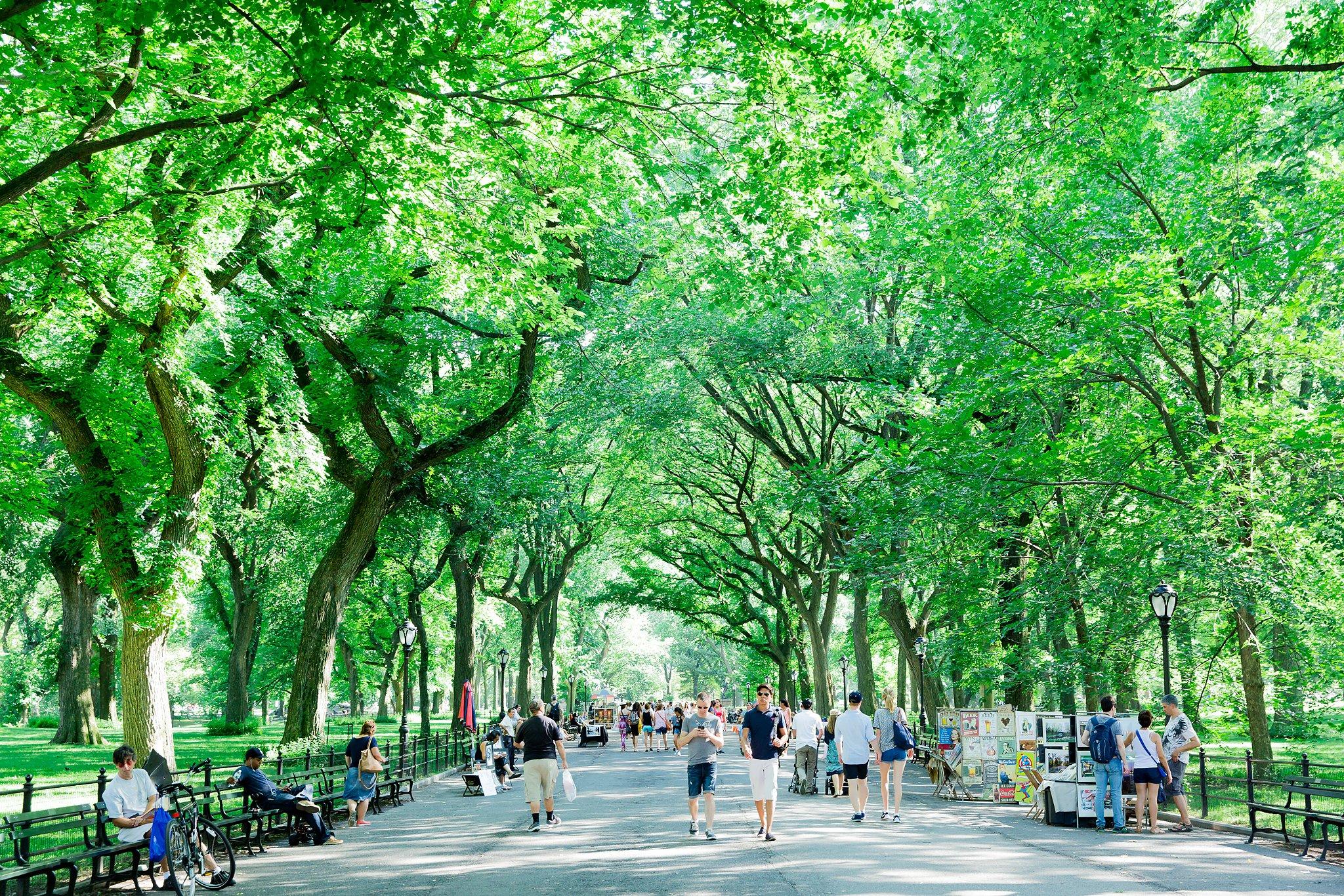 New York City Day Trip East Coast Summer Vacation Megan Kelsey Photography-9971.jpg