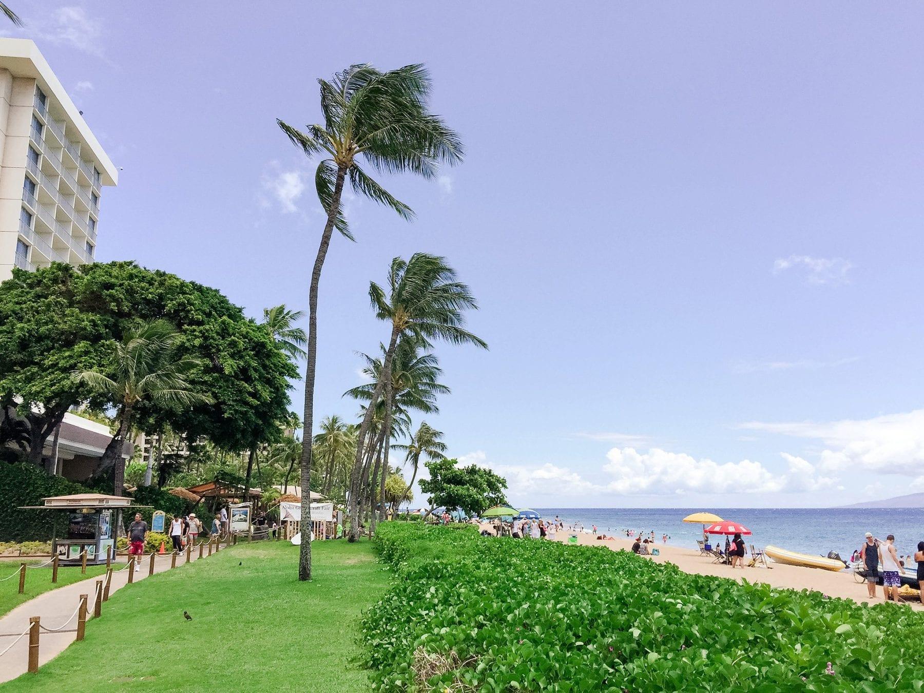 Hawaii Honeymoon Photos Megan & Justin Maui Vacation Things To Do iPhone-24.jpg