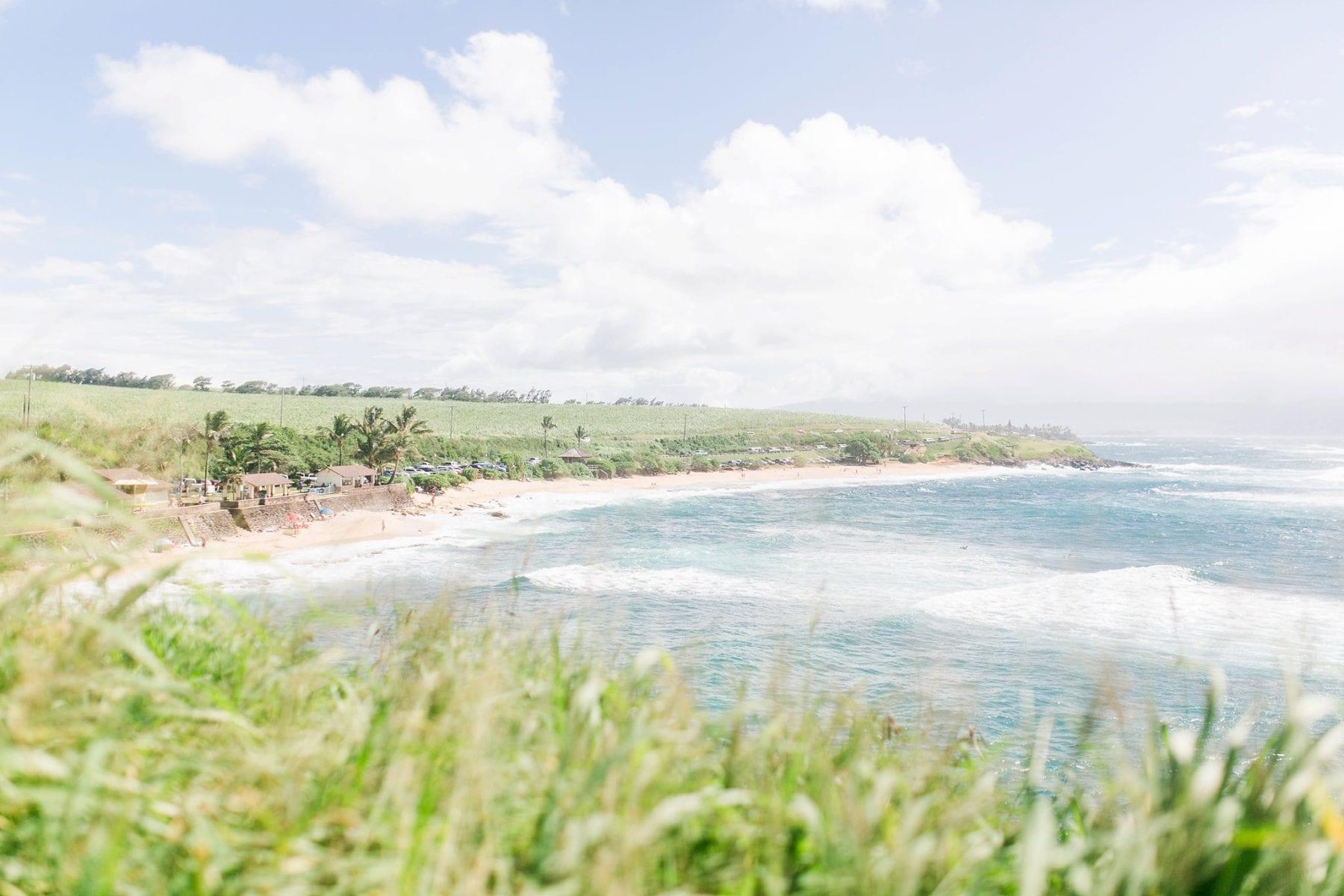 Justin & Megan Hawaiian Honeymoon Maui Oahu Vacation Photos--10.jpg