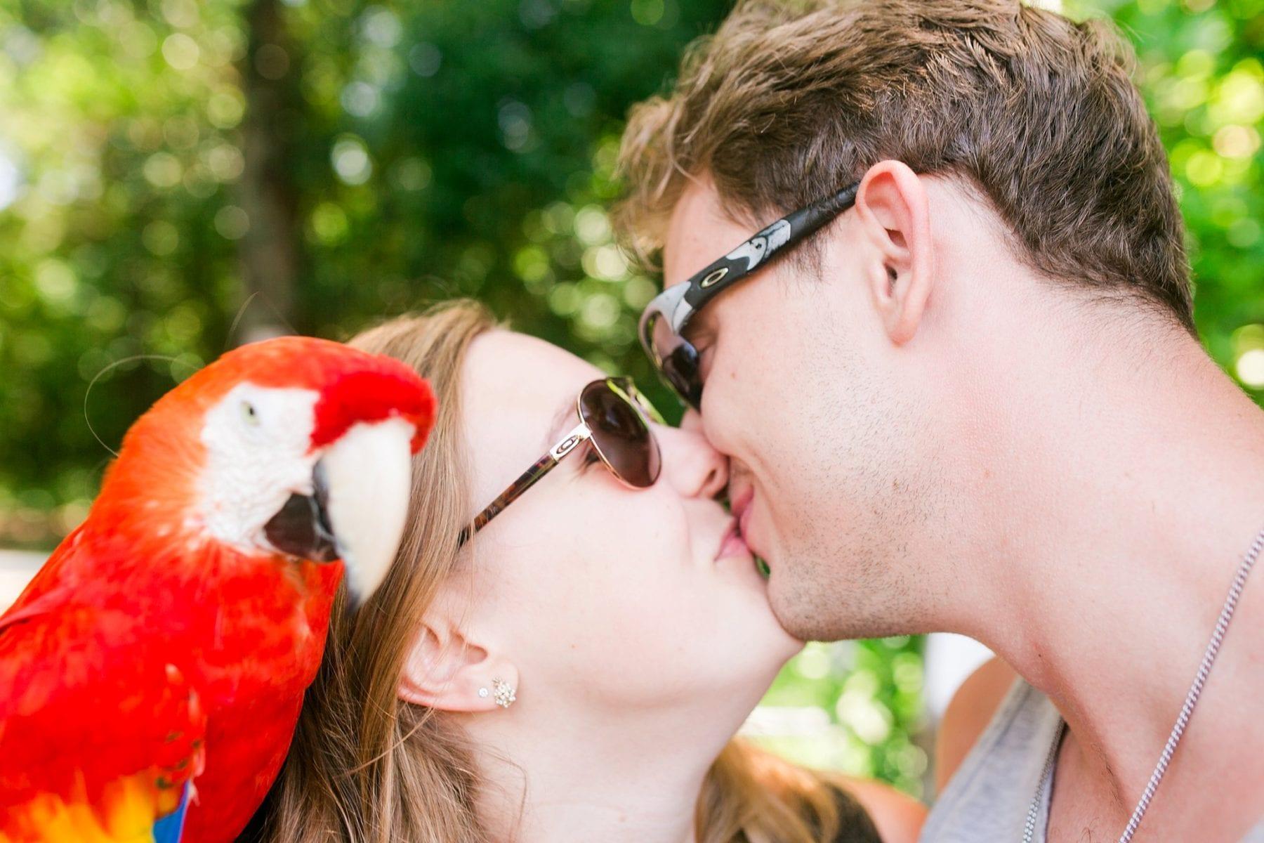 Justin & Megan Hawaiian Honeymoon Maui Oahu Vacation Photos--23.jpg