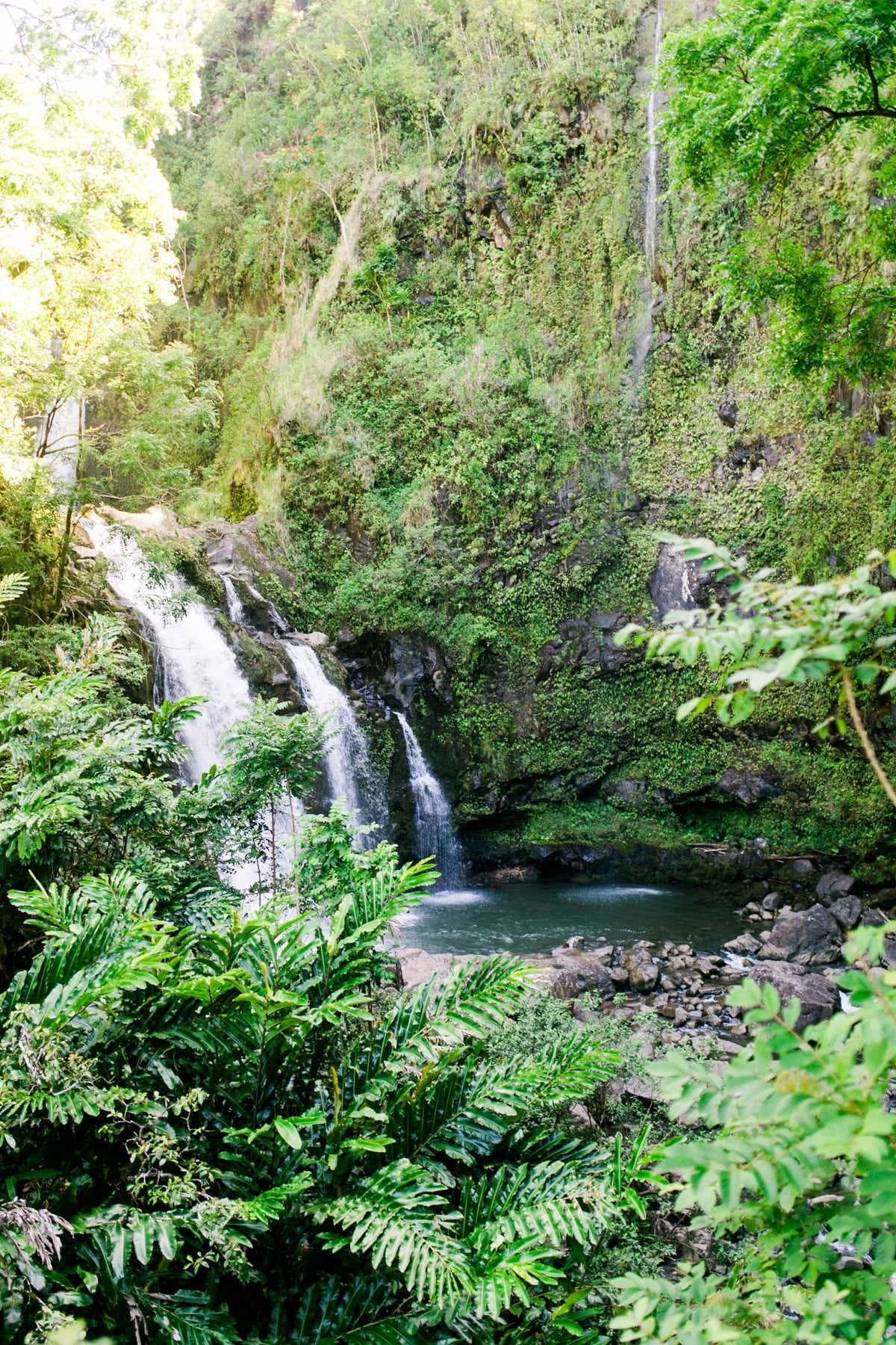 Justin & Megan Hawaiian Honeymoon Maui Oahu Vacation Photos--34.jpg