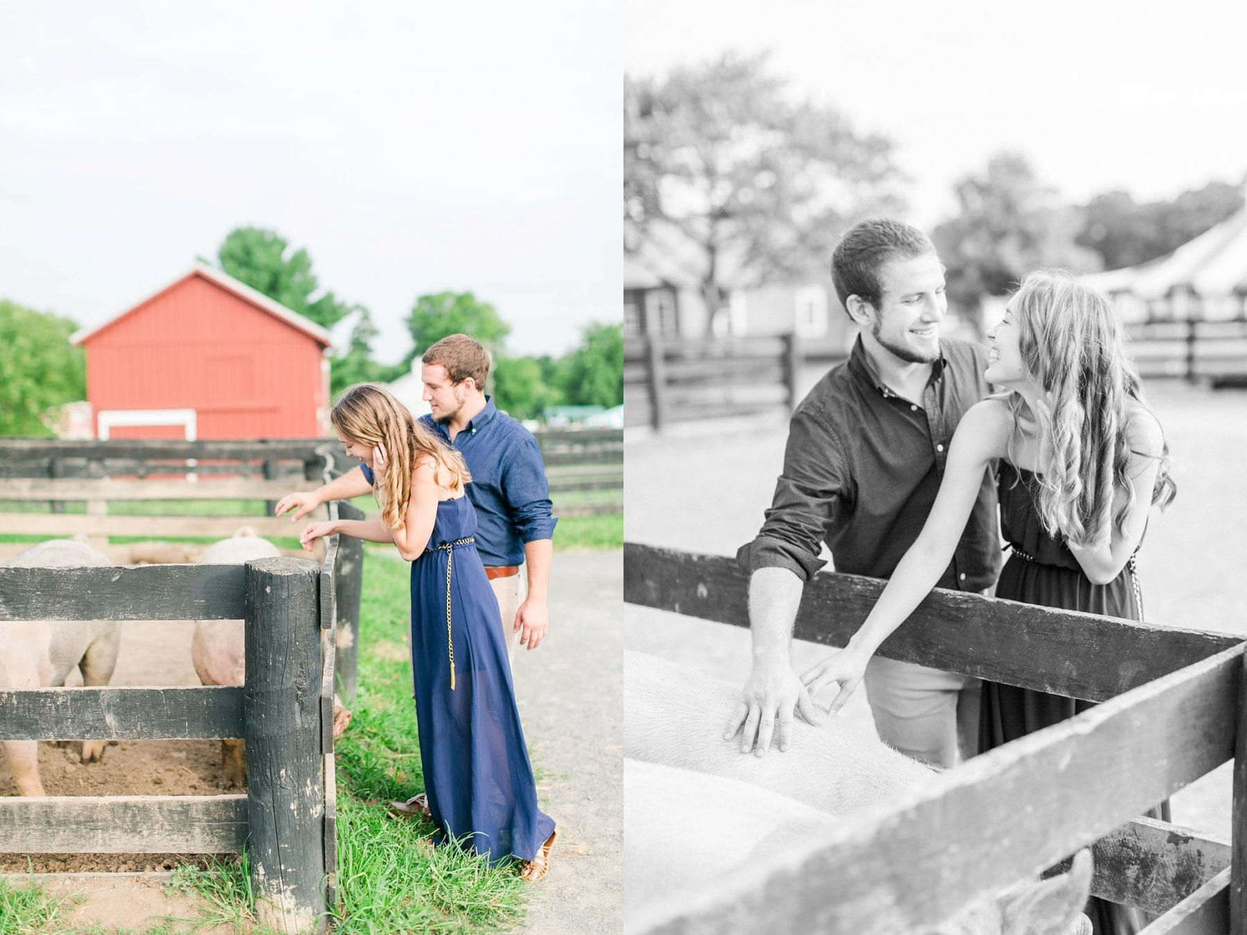 County Fair Engagement Photos Virginia Wedding Photographer Megan Kelsey Photography Samantha & Charles-219.JPG