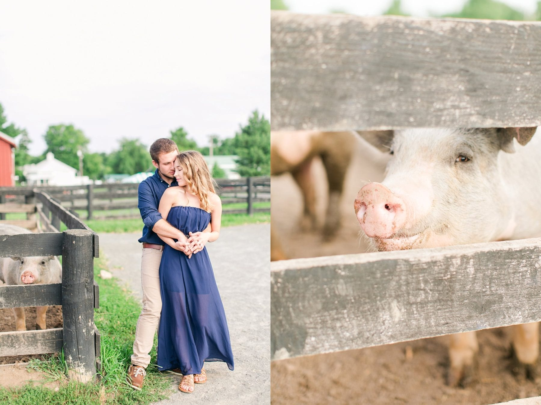 County Fair Engagement Photos Virginia Wedding Photographer Megan Kelsey Photography Samantha & Charles-224.JPG
