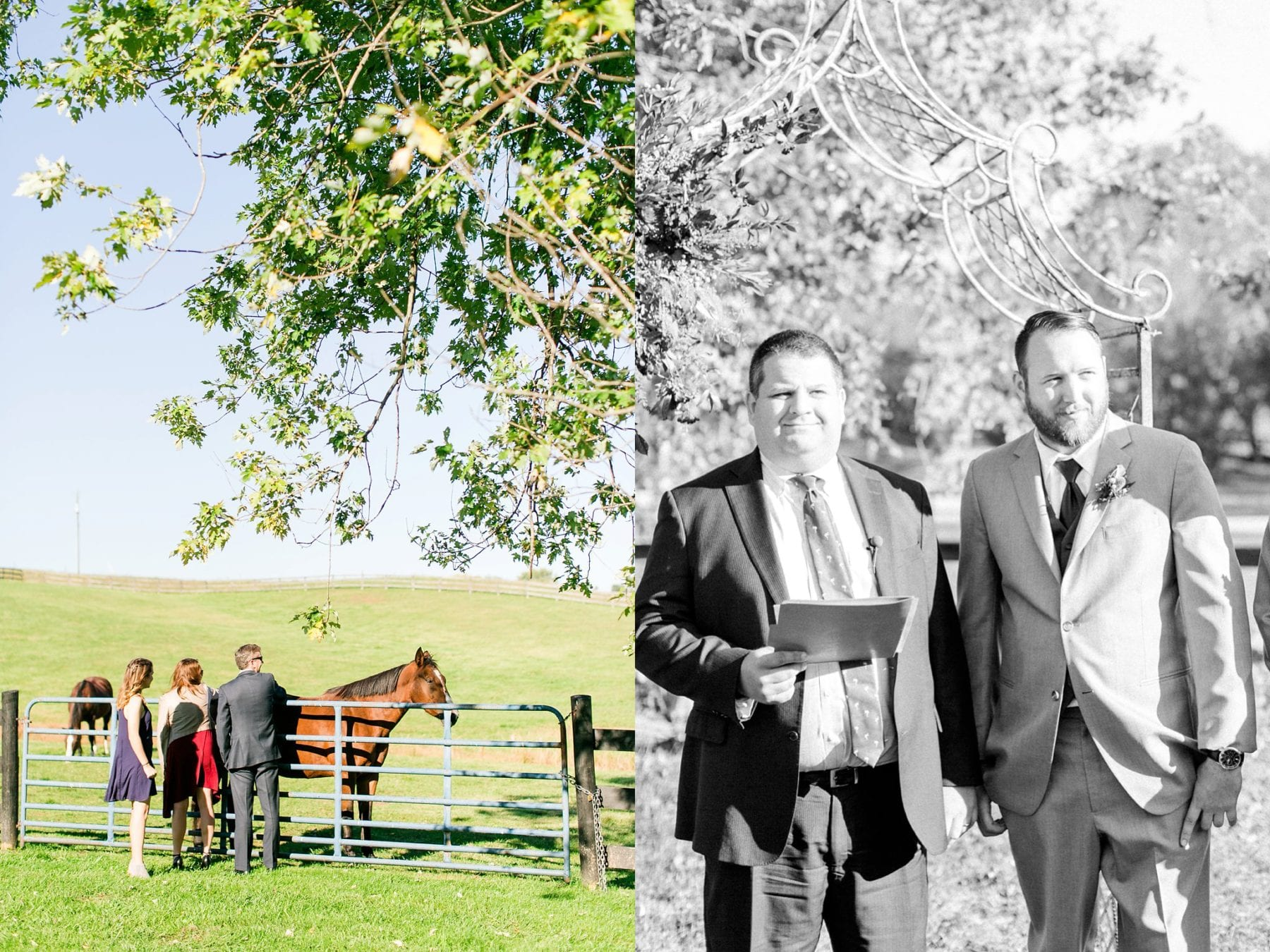 Tranquility Farm Wedding Photos Leesburg Wedding Photographer Megan Kelsey Photography Virginia Wedding Photographer Matt & Colleen-120.jpg