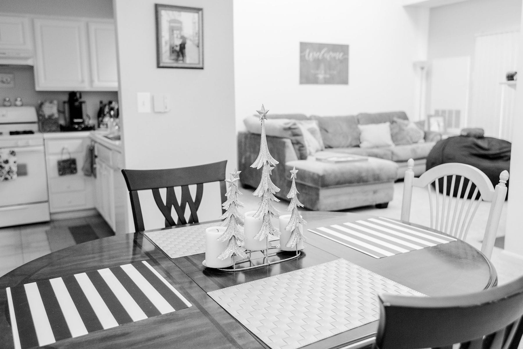 Our First Apartment Simple Newlywed Home Style Justin & Megan Kelsey Photography-8