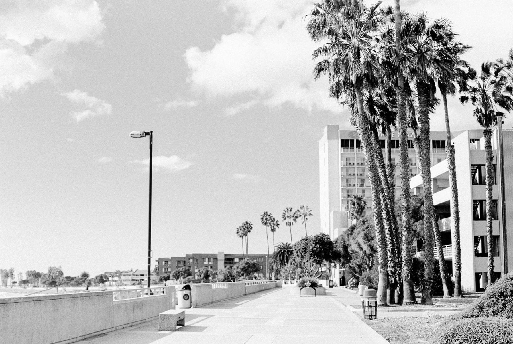 Southern California on Film Megan Kelsey Photography-27.jpg