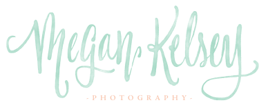 Virginia Wedding Photographer Megan Kelsey Blog logo