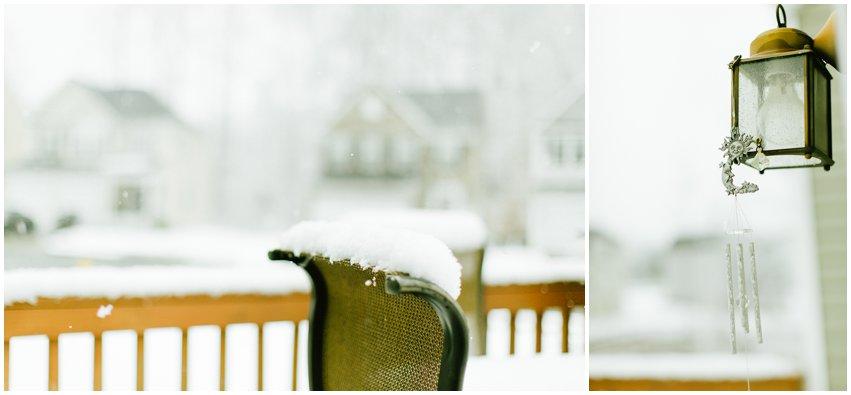 Virginia Lifestyle Photographer Dogs Woodbridge Snow Winter VSCO