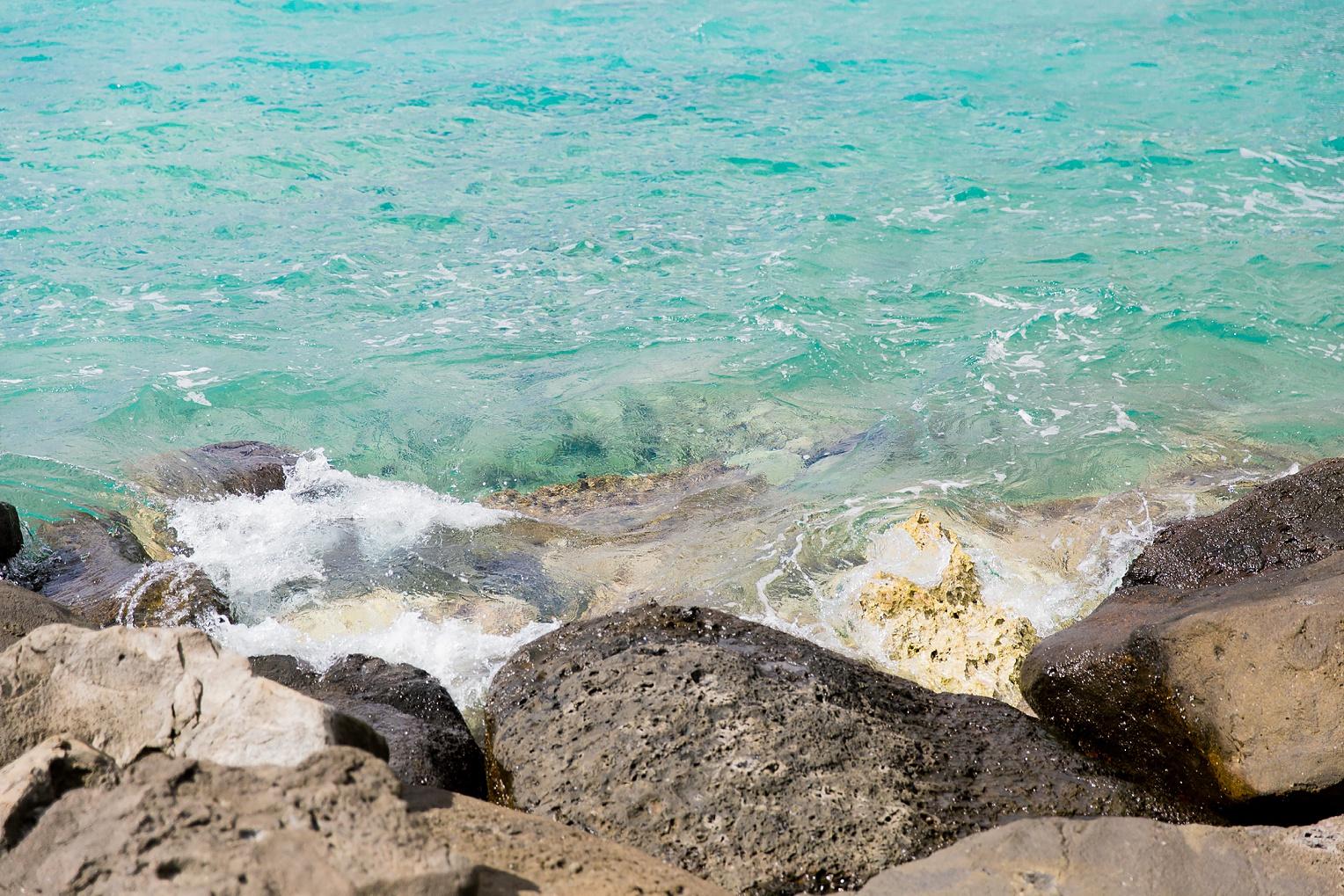 Hawaii Oahu Botanical Gardens Ko'olina Lagoon-9222.jpg