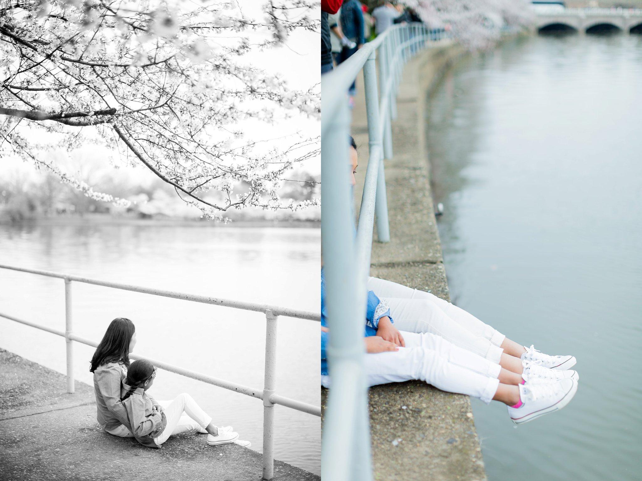 Cherry Blossom Family Portraits DC Photography-6344-2.jpg