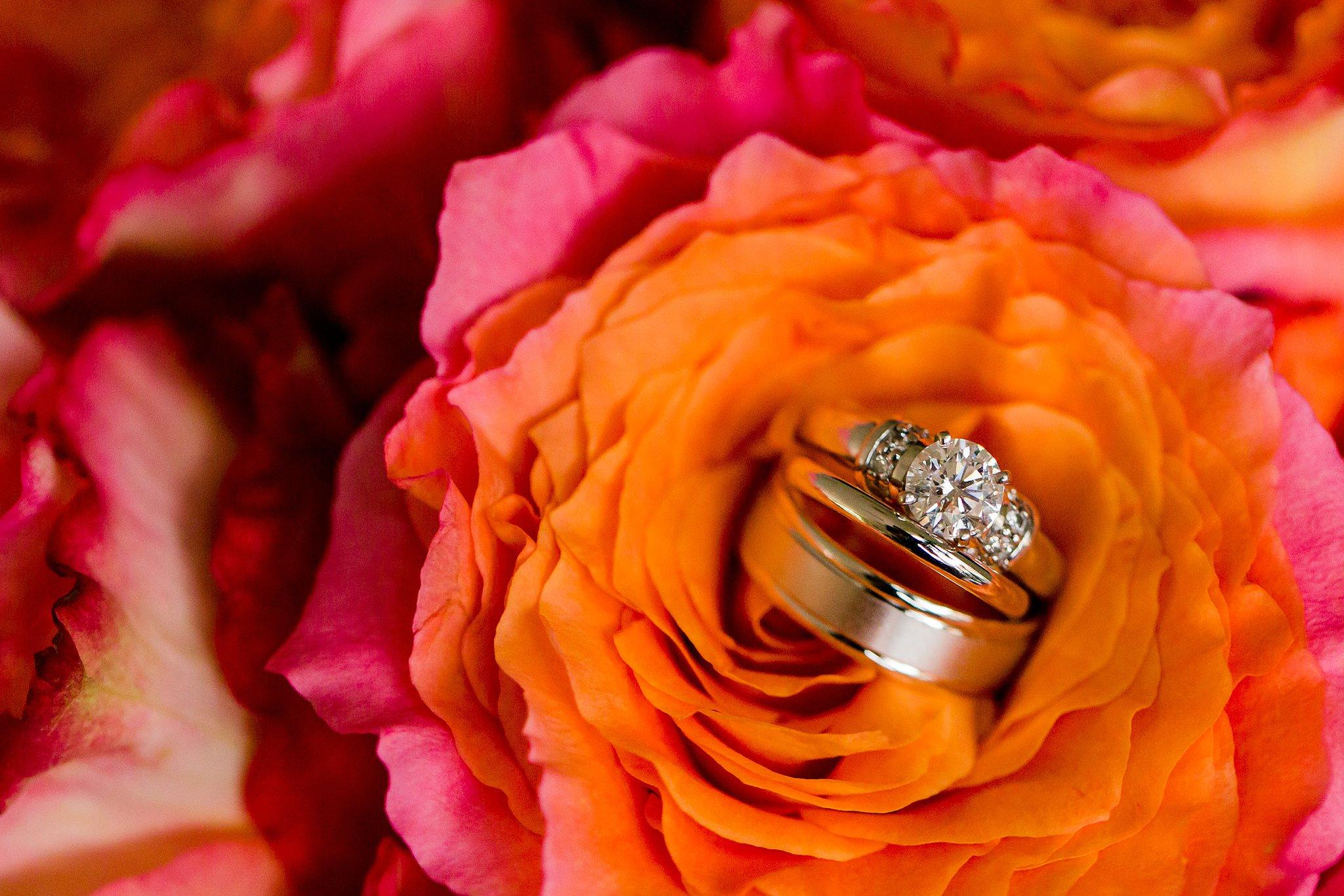 Waterford Springfield Wedding Photography Dyanna & Brian Megan Kelsey Photography-281.jpg