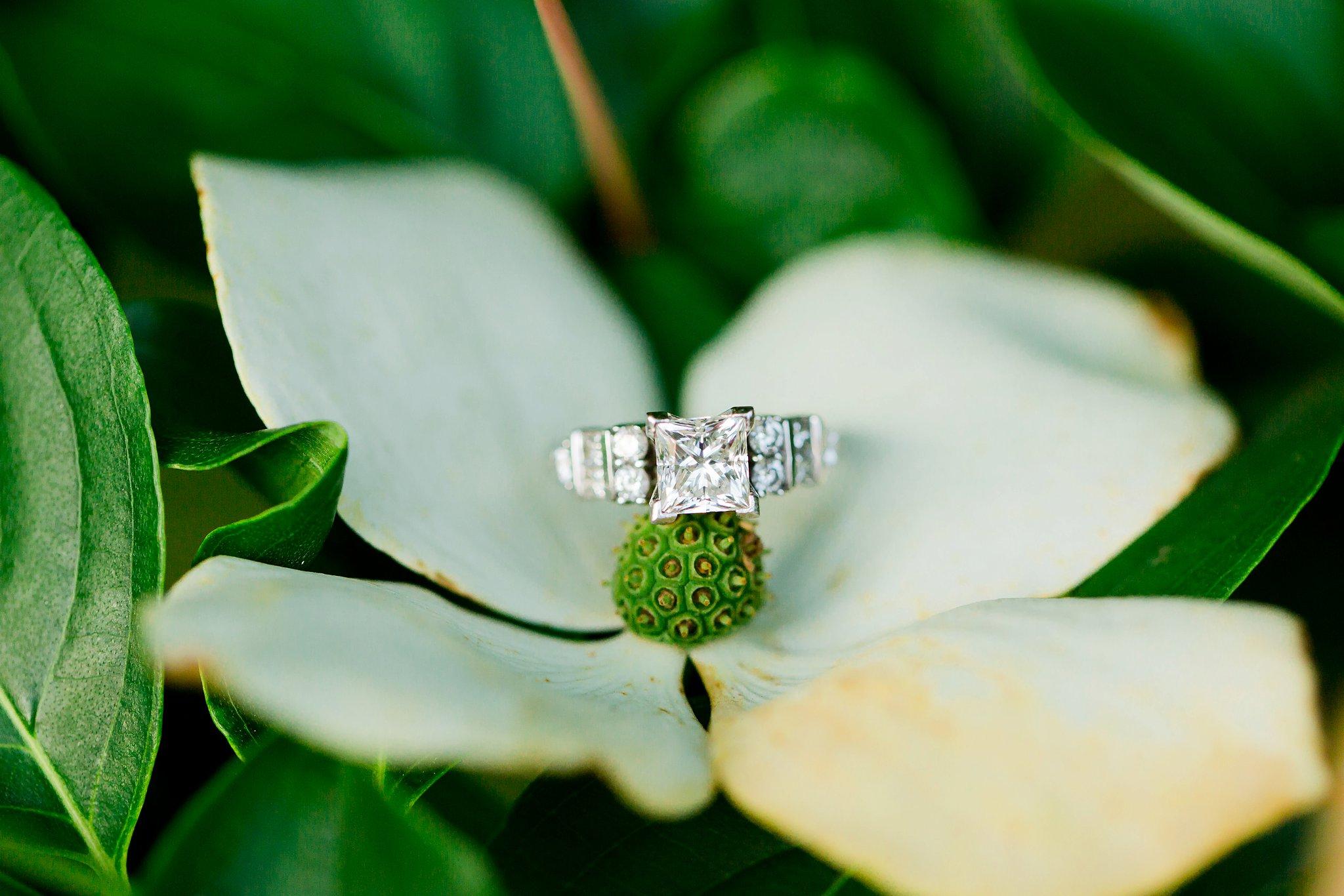 Thin & Phil Meridian Hill Park DC Engagement Photos-125.jpg