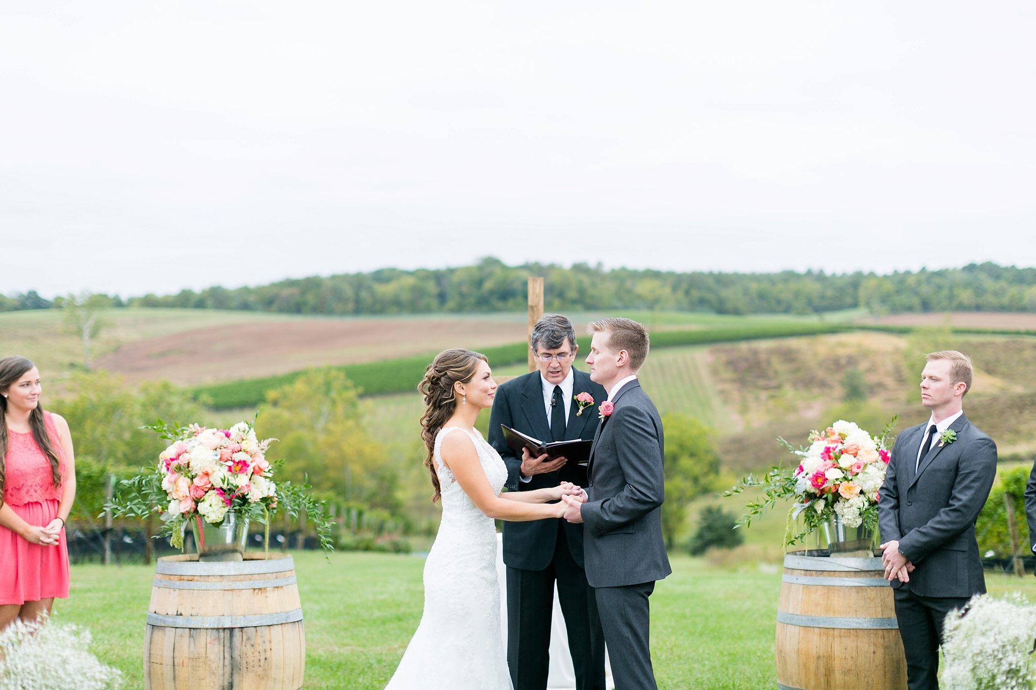 Stone Tower Winery Wedding Photos Virginia Wedding Photographer Megan Kelsey Photography Sam & Angela-155.jpg