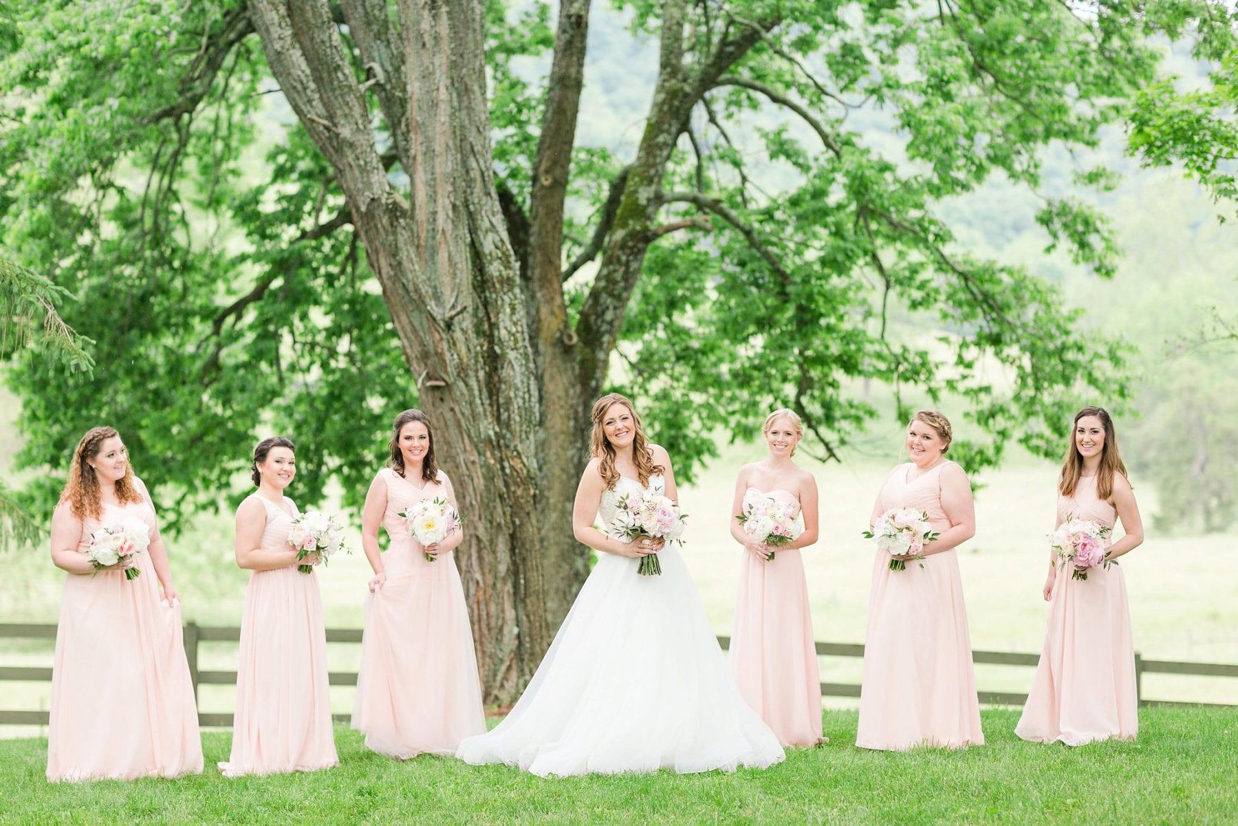 Justin & Megan Big Spring Farm Wedding Photos-146.jpg