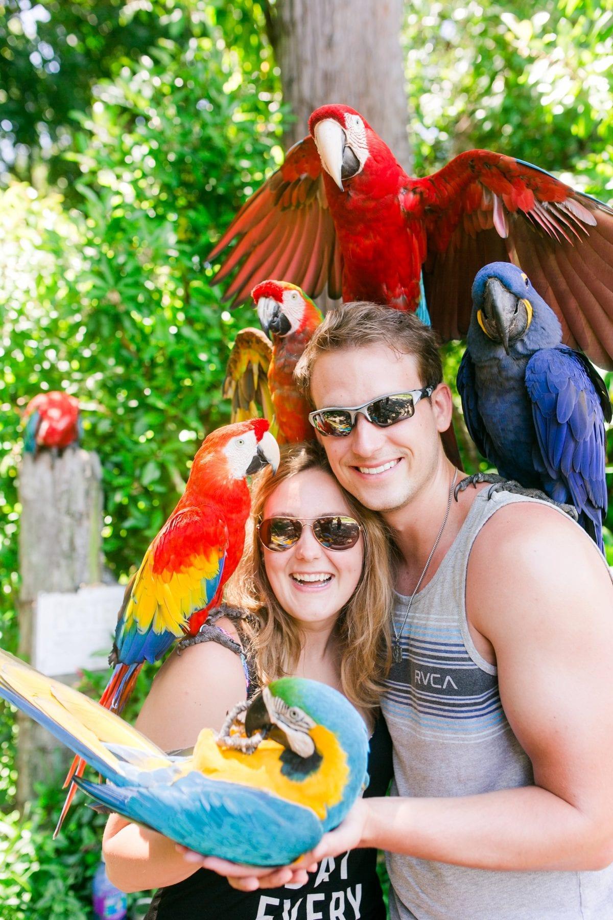 Justin & Megan Hawaiian Honeymoon Maui Oahu Vacation Photos--22.jpg