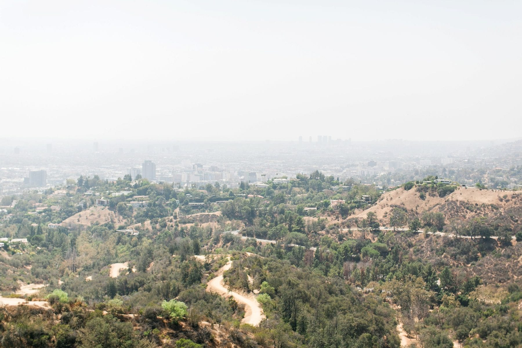 What To See In Los Angeles California Wedding Photographer Megan Kelsey Photography-1.jpg