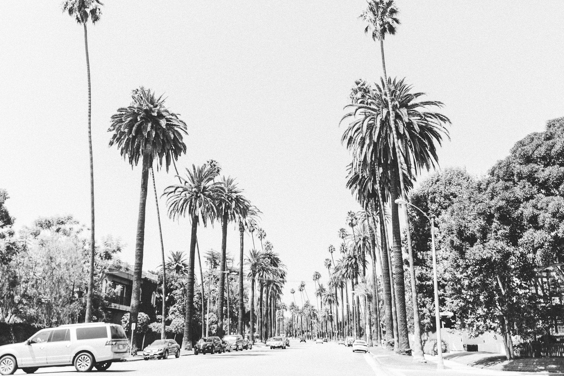 What To See In Los Angeles California Wedding Photographer Megan Kelsey Photography-40.jpg