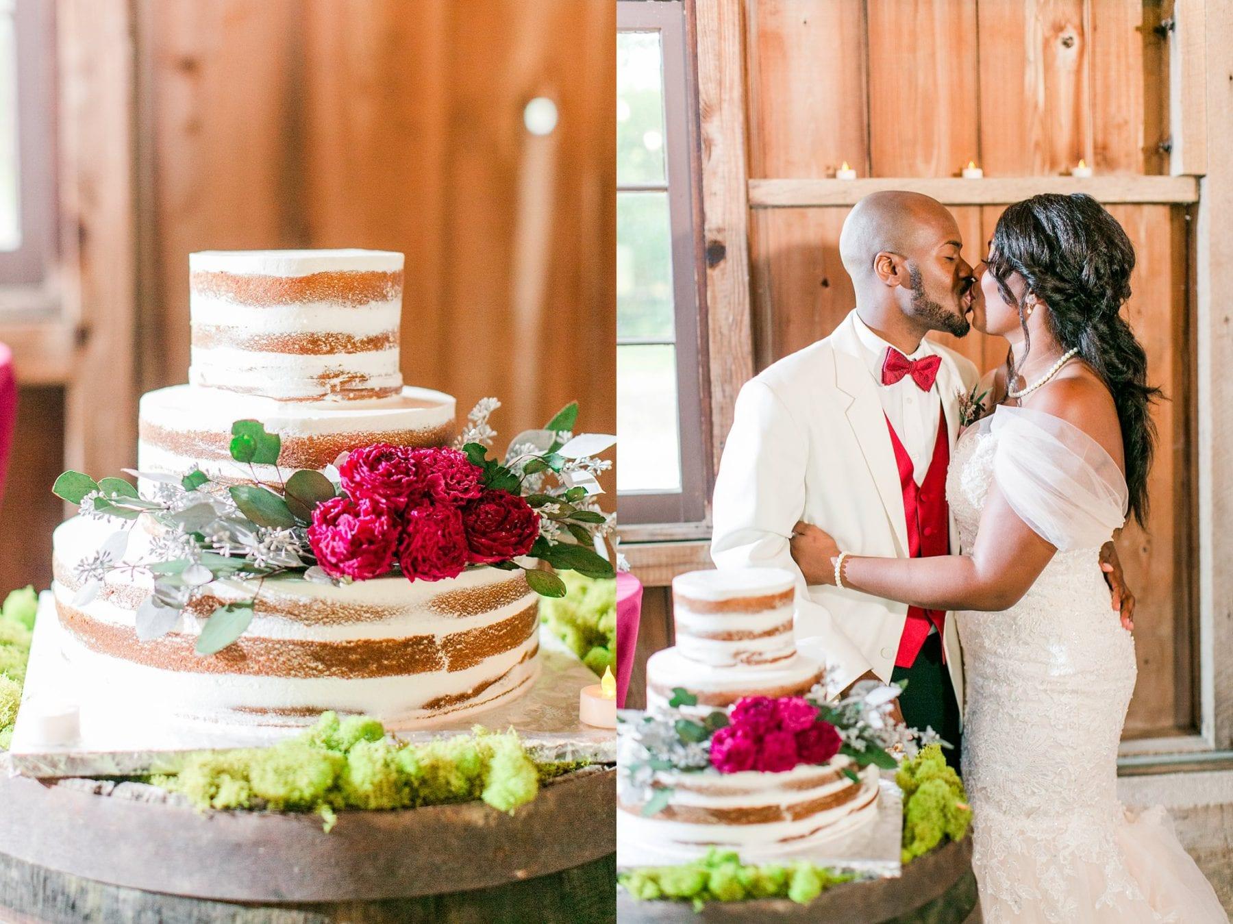 Jefferson Patterson Park Wedding Maryland Wedding Photographer Megan Kelsey Photography Jasmine & Seyi-118.jpg