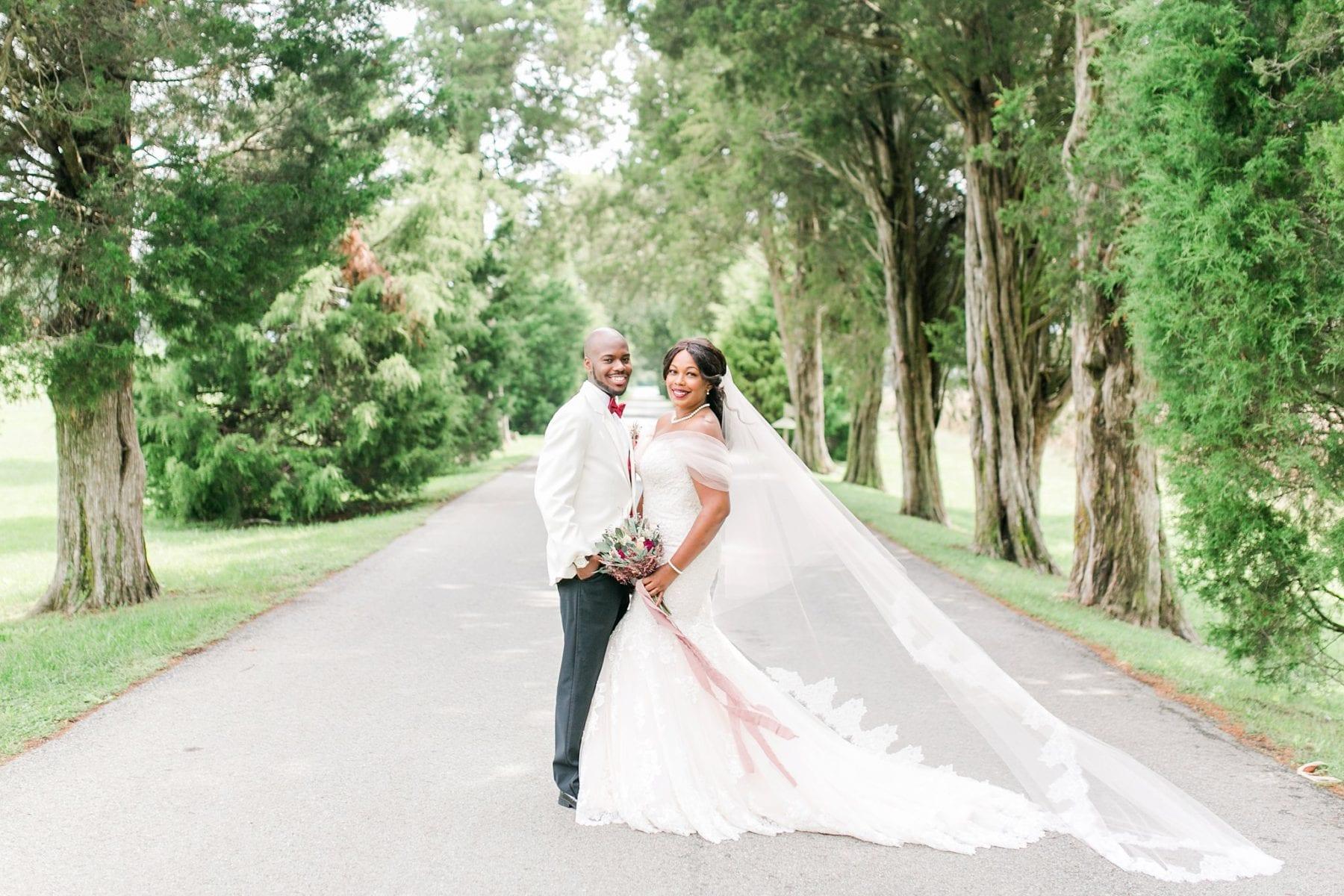 Jefferson Patterson Park Wedding Maryland Wedding Photographer Megan Kelsey Photography Jasmine & Seyi-47.jpg