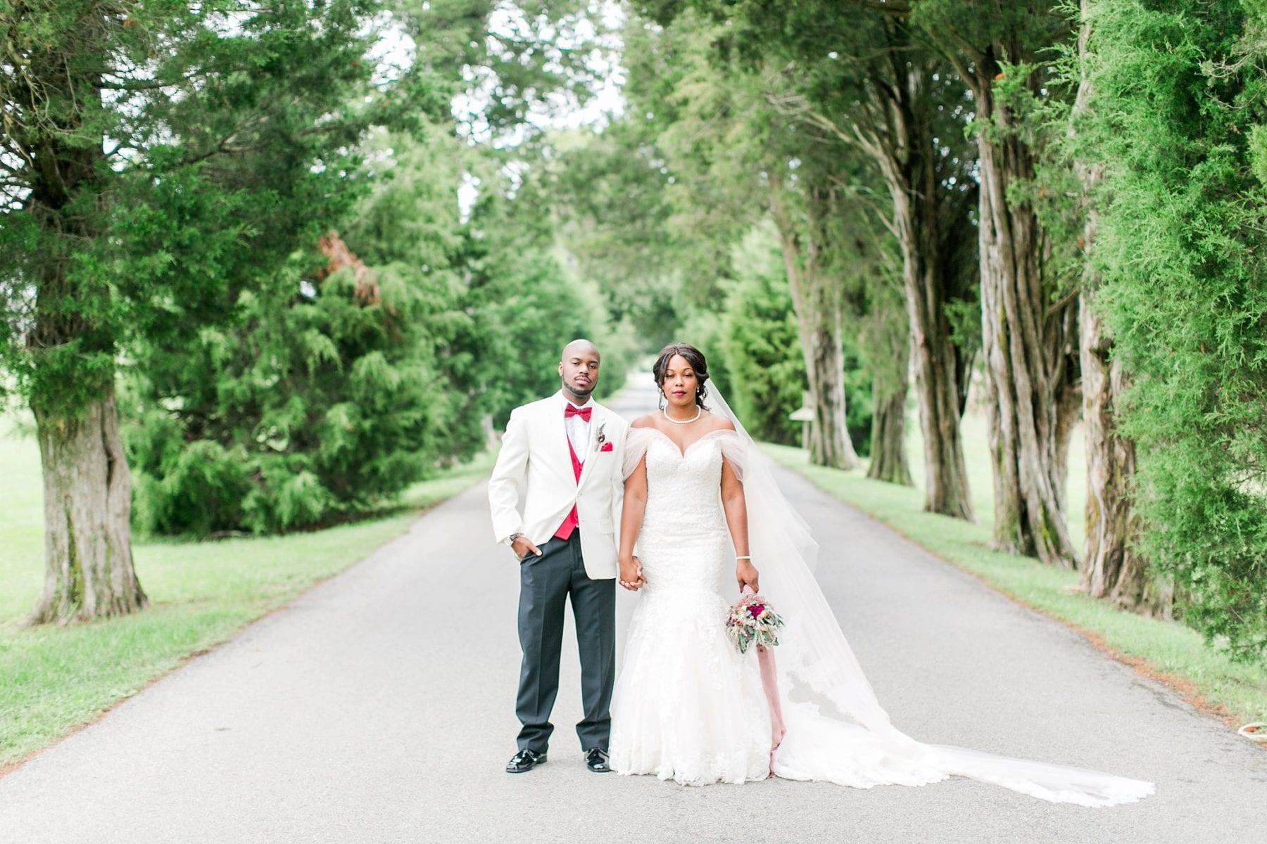Jefferson Patterson Park Wedding Maryland Wedding Photographer Megan Kelsey Photography Jasmine & Seyi-54.jpg