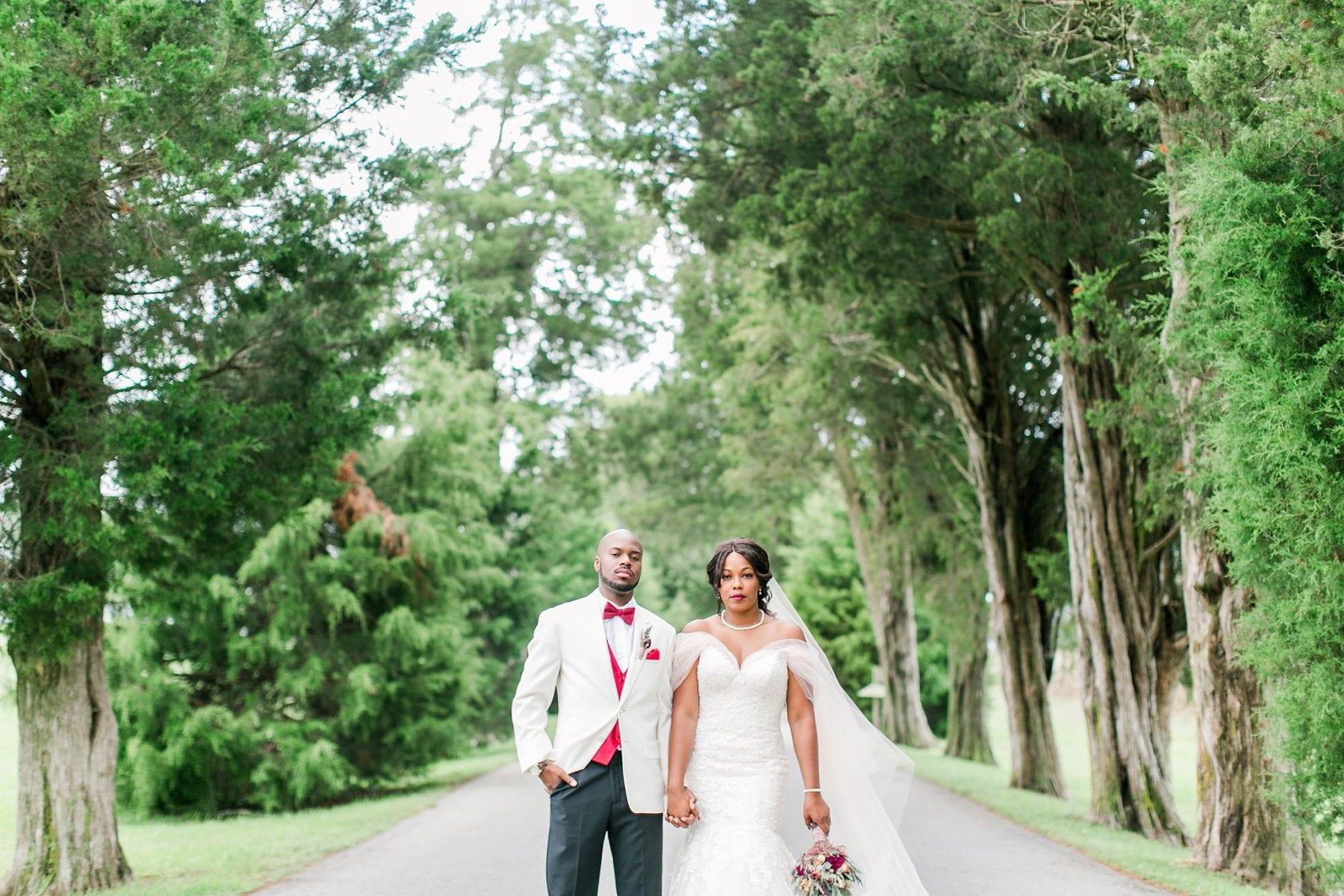 Jefferson Patterson Park Wedding Maryland Wedding Photographer Megan Kelsey Photography Jasmine & Seyi-55.jpg