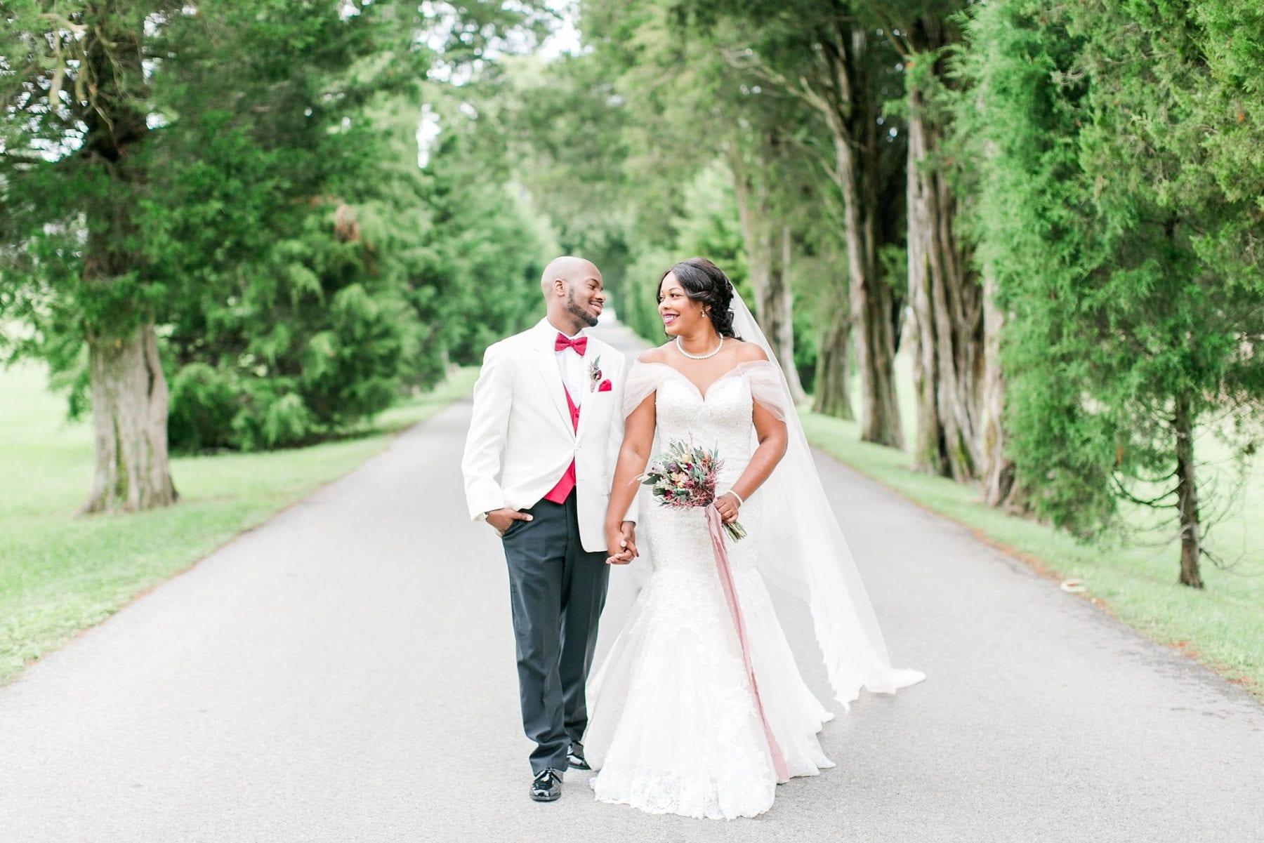 Jefferson Patterson Park Wedding Maryland Wedding Photographer Megan Kelsey Photography Jasmine & Seyi-58.jpg