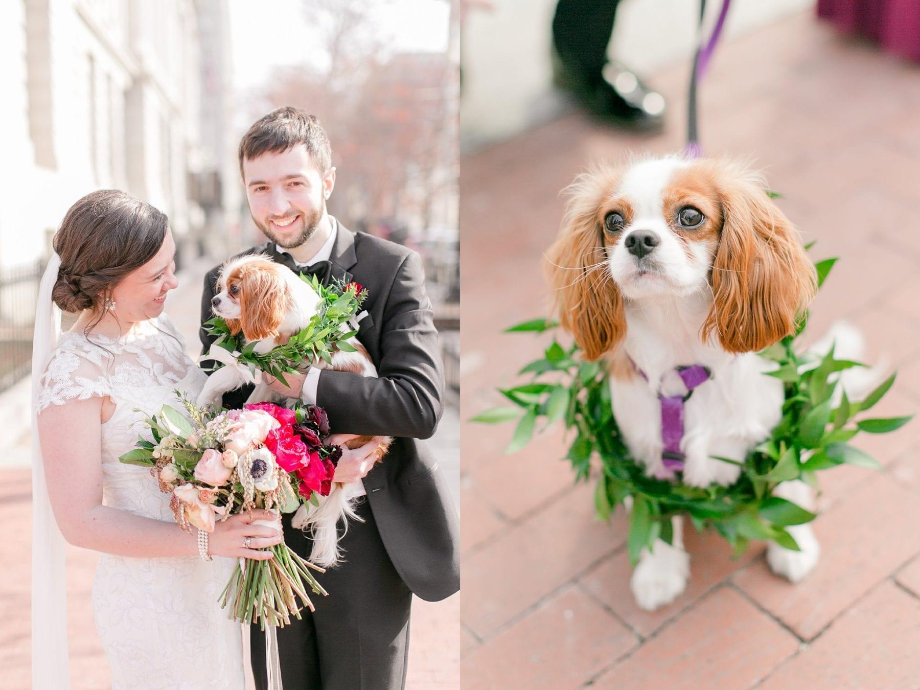 Hotel Monaco Washington DC Wedding Photos Megan Kelsey Photography Erin & Mike -225