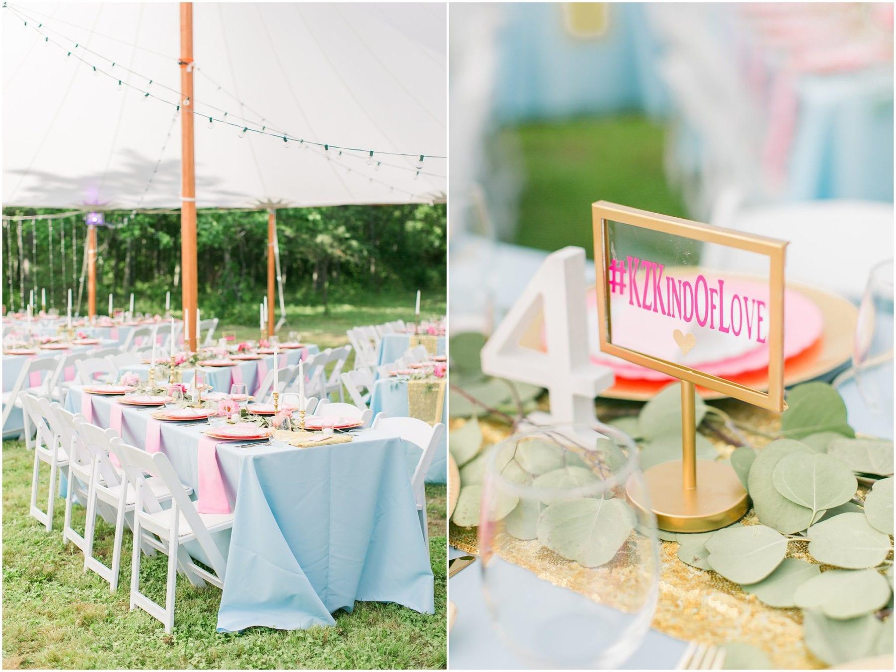 Maryland Backyard Wedding Photos Kelly & Zach Megan Kelsey Photography-170.jpg