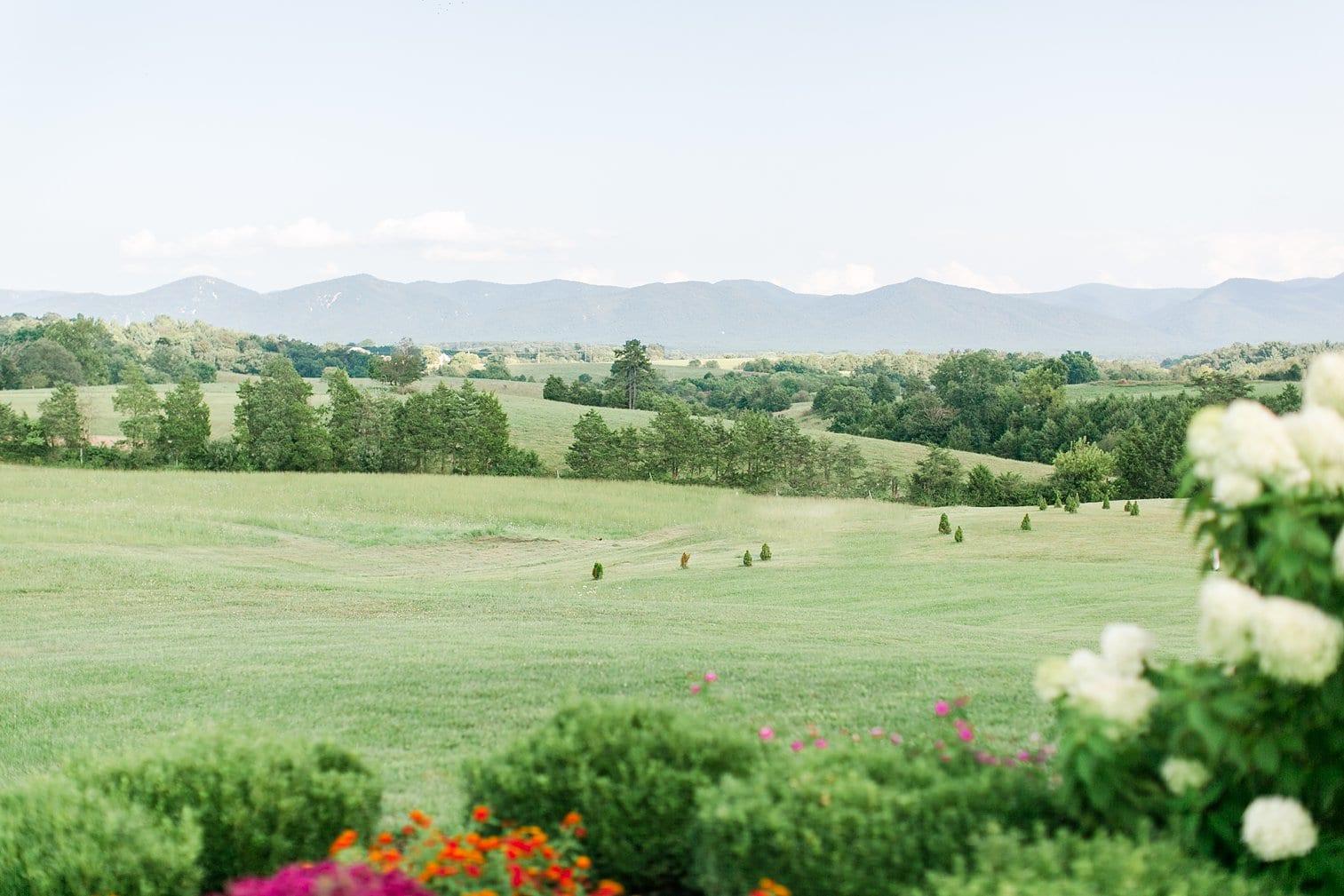 Crosskeys Vineyard Wedding Harrisonburg Virginia Wedding Photographer Megan Kelsey Photography-131.jpg