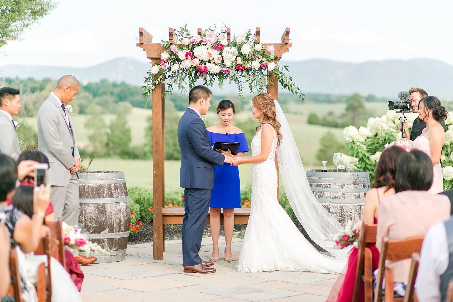 Crosskeys Vineyard Wedding Harrisonburg Virginia Wedding Photographer Megan Kelsey Photography-141.jpg